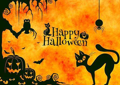 Картинки по запросу хеллоуин